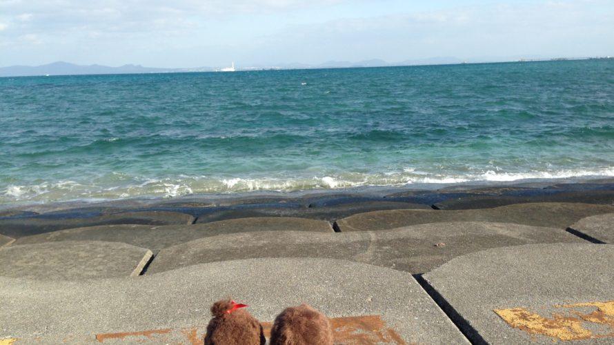 旅するモンチッチ、背中で語る in 沖縄
